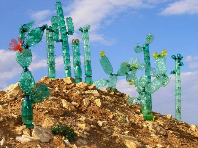 cactus con botellas recicladas