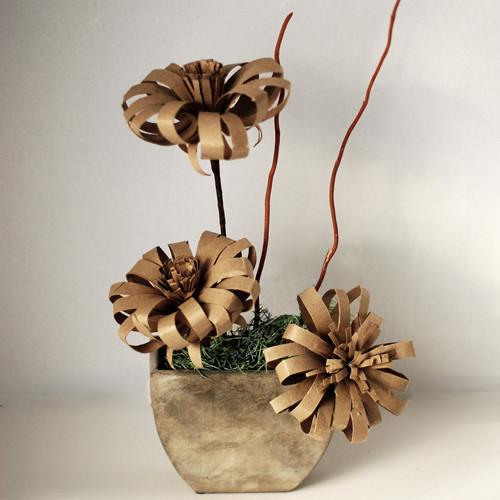 plantas de cartón